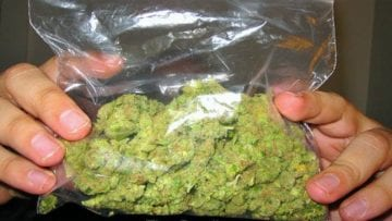 Ounce Of Weed