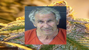 80-Year-Old Weed Plug Sentenced For 400 Lbs. & $15M In Cash
