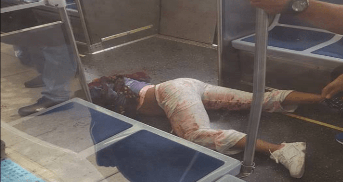 Chicago Woman Train Stabbed