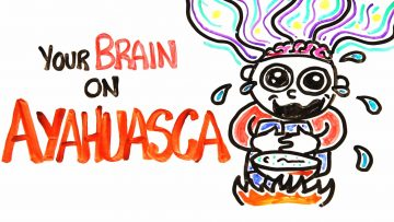 How Getting Trippy With Ayahuasca Affects The Brain