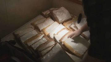 Canadians Caught With $30K Worth of Coke On A Cruise Ship