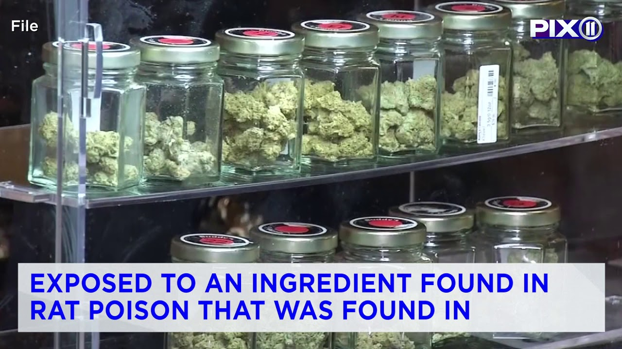 3 Dead & 100 Injured Due To Smoking Fake Weed Laced With Rat Poison