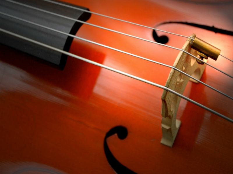 Beginners Guide to Choosing The Ideal Cello Size